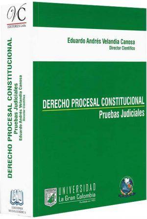 Derecho-procesal-constitucional -libros-jurídicos-lijursanchez-juridica-sanchez