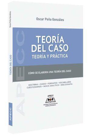 teoria-del-caso-teoria-y-practica-libros-jurídicos-lijursanchez-juridica-sanchez
